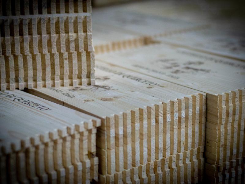 14_particolre dentatura cassette legno_s
